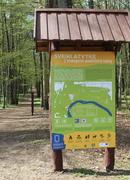 Nemokamos ekskursijos Vidzgirio botaniniame draustinyje