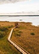 Первые признаки весны - в биосферном заповеднике Жувинтас.