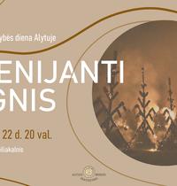 Obchody Dnia Jedności Bałtyku