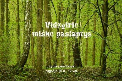 """Pėsčiųjų žygis """"Vidzgirio miško paslaptys"""""""
