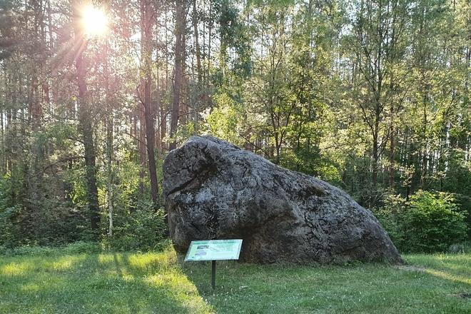 Wielki kamień Dzukiji