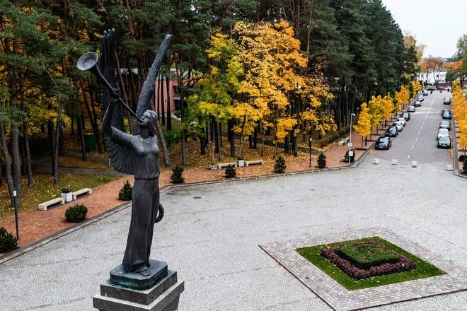 Памятник «Ангел свободы»