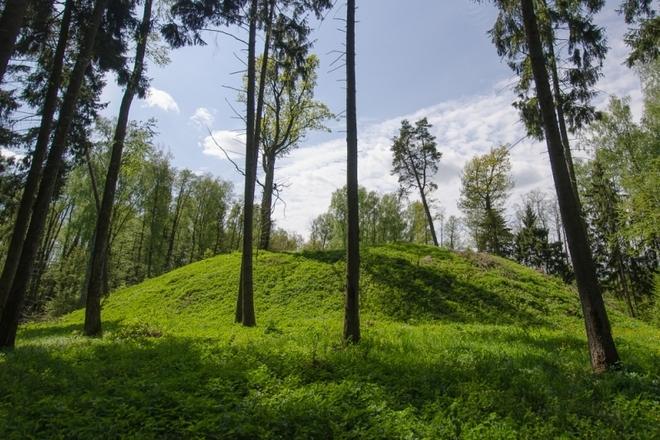 Dirmiškių piliakalnis