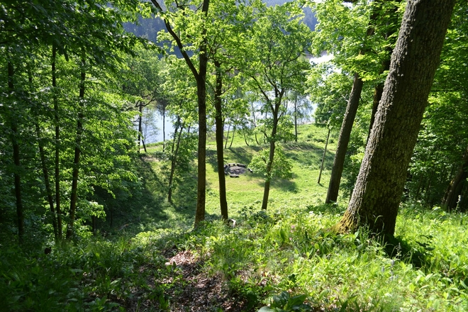 Radžiūnų piliakalnis