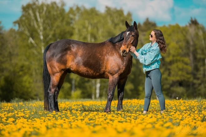 Jazda na koniach i kucykach