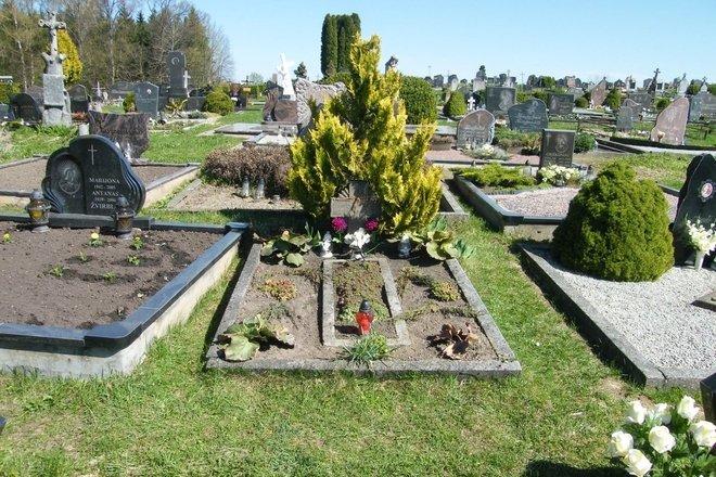 Lietuvos karių kapai Miroslave