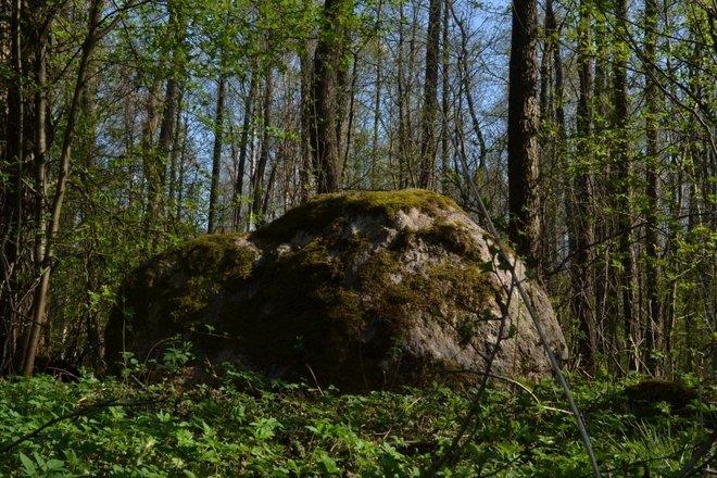 Salos akmuo, vadinamas Mergos akmeniu
